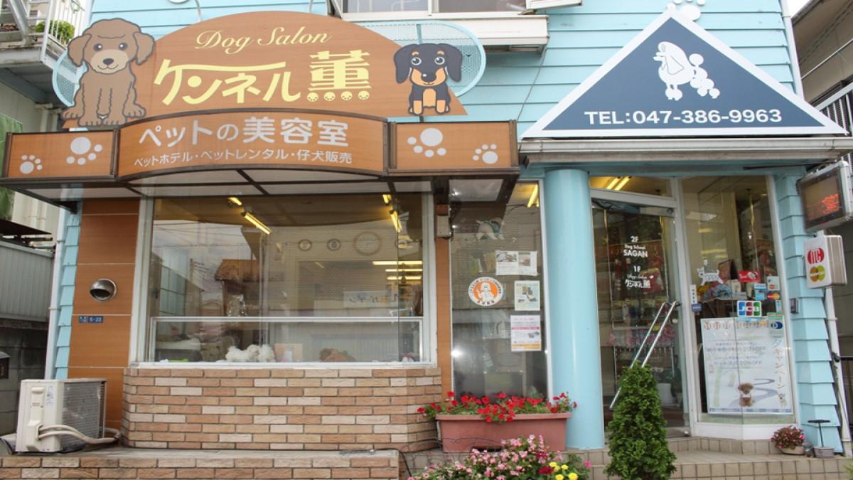 ドッグサロン ケンネル薫 松戸店