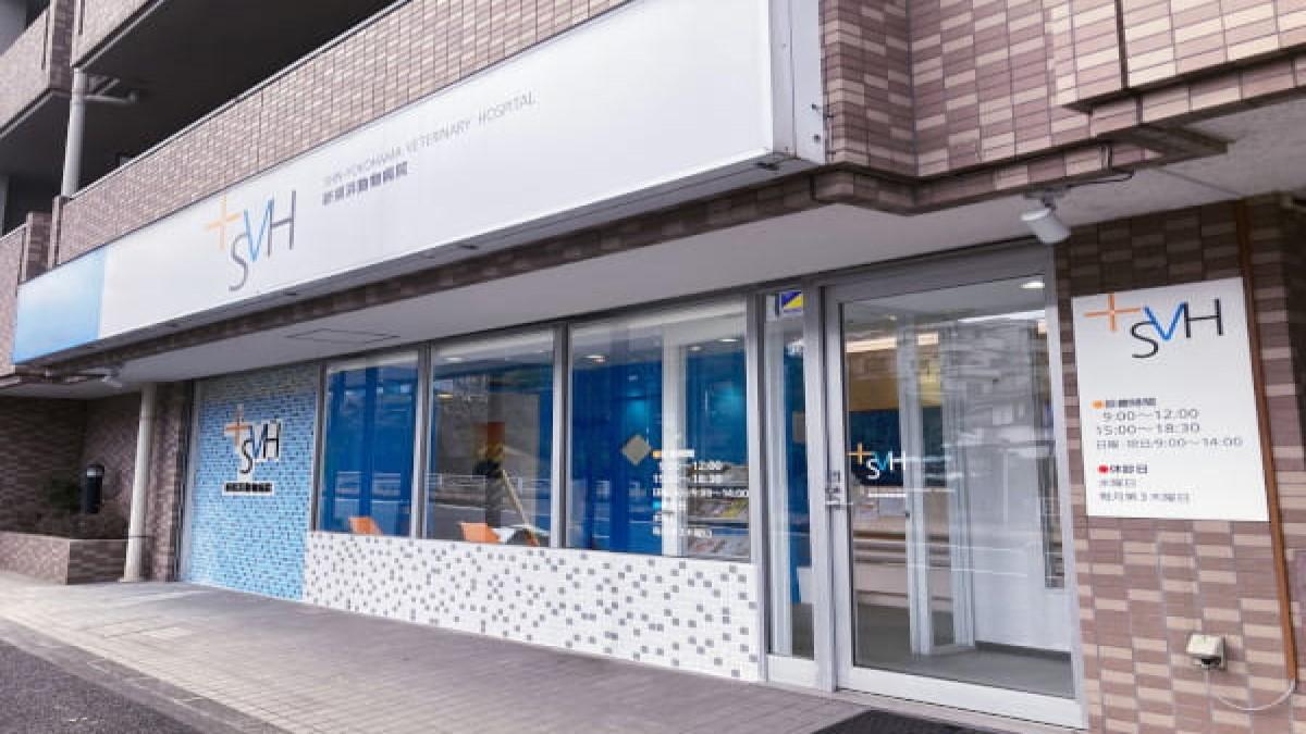 新横浜動物病院