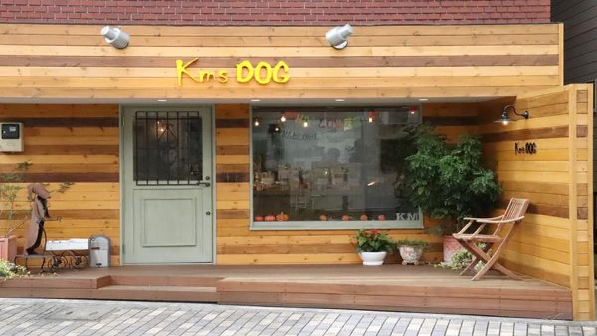 Km's DOG