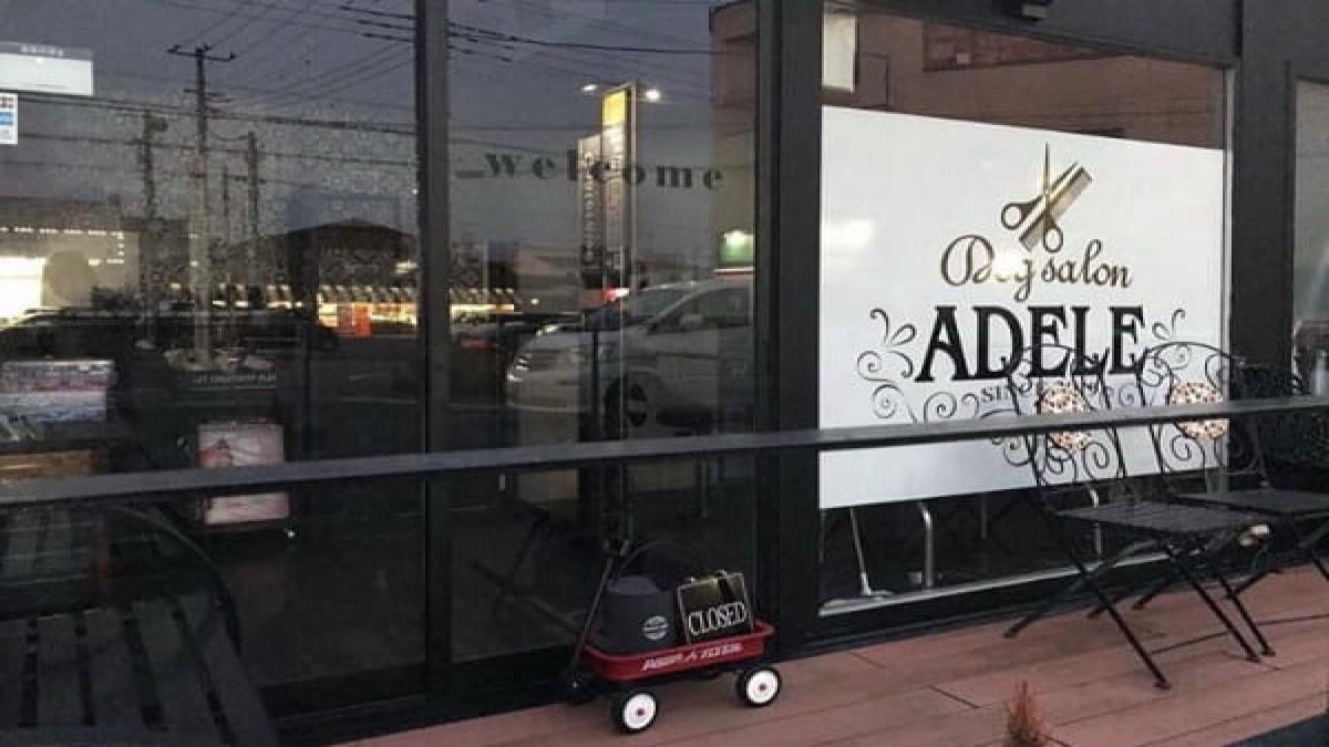 Dog salon ADELE