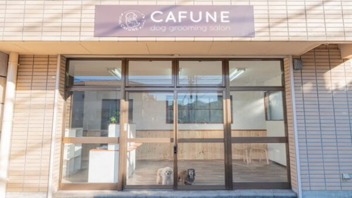 dog grooming salon CAFUNE