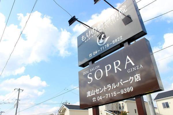 SOPRA GINZA 流山セントラルパーク店