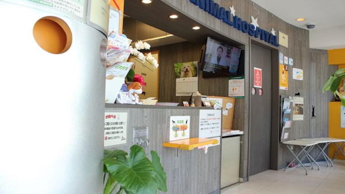 ひがしやま動物病院(トリミング)