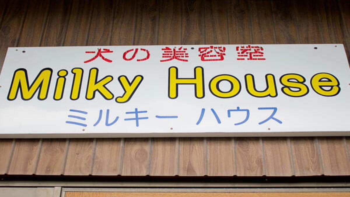 犬の美容室 Milky House
