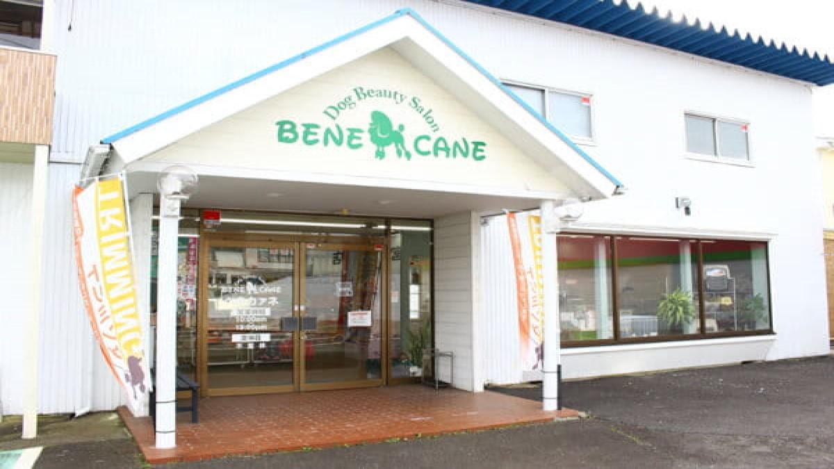 BENECANE 山際店